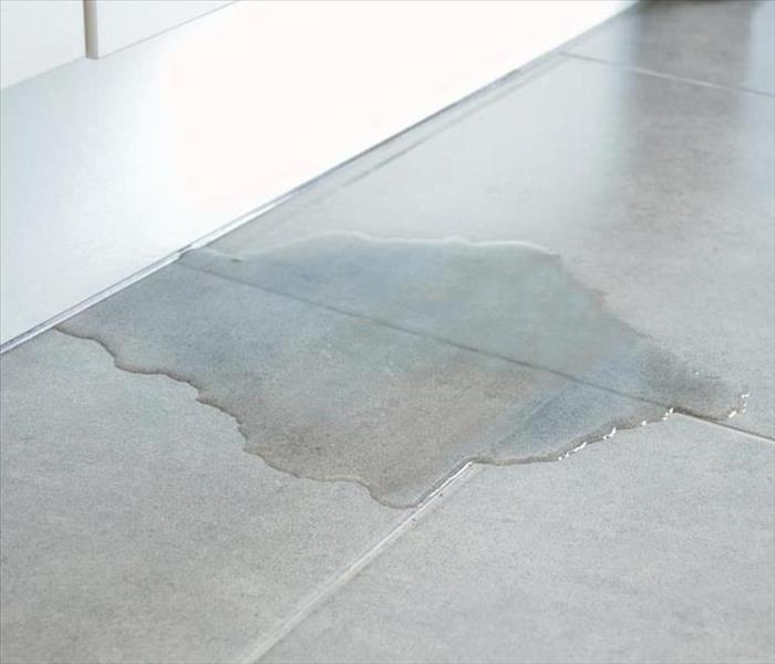 water puddle on gray tile under white door