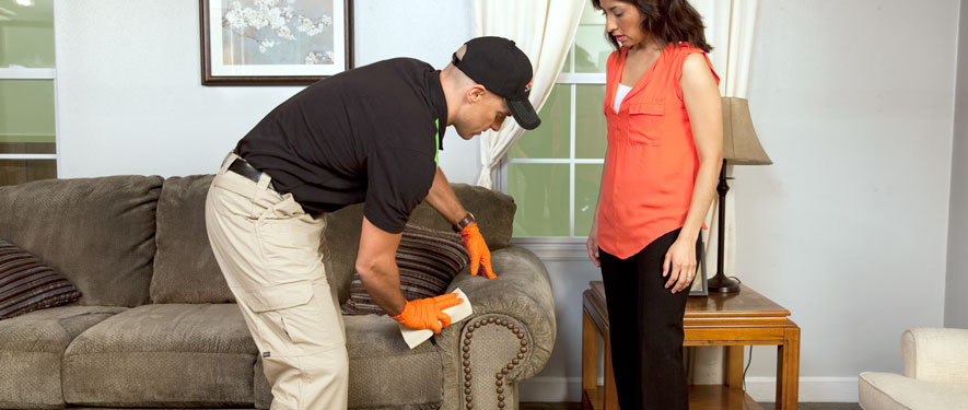 North Long Beach, CA carpet upholstery cleaning